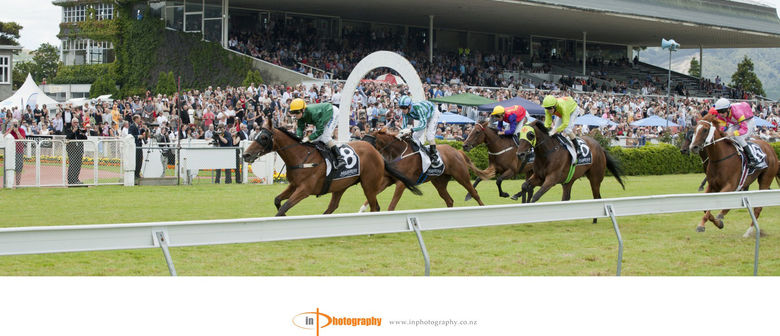 All About New Zealand's Wellington Cup Carnival